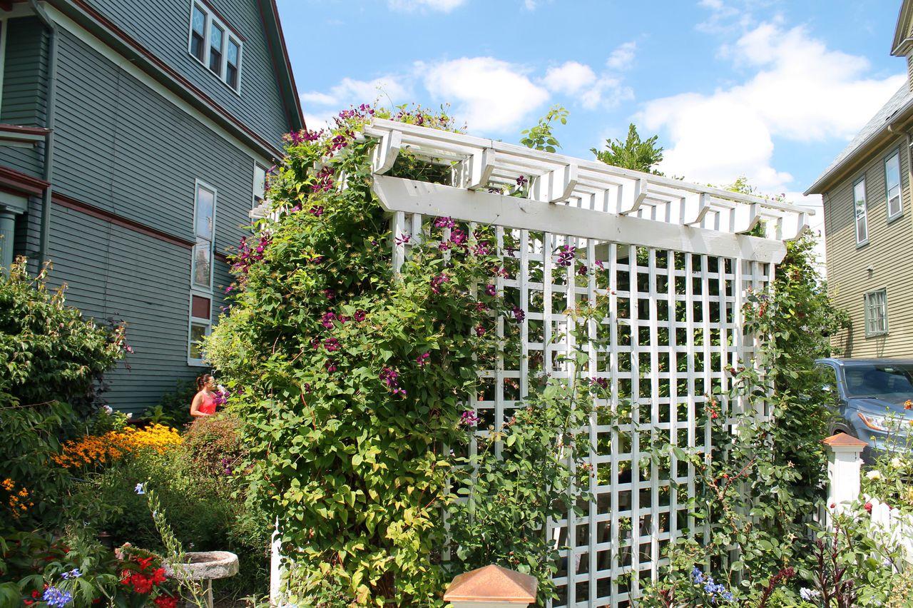แนะนำจัดสวนไม้ระแนง ข้างบ้าน